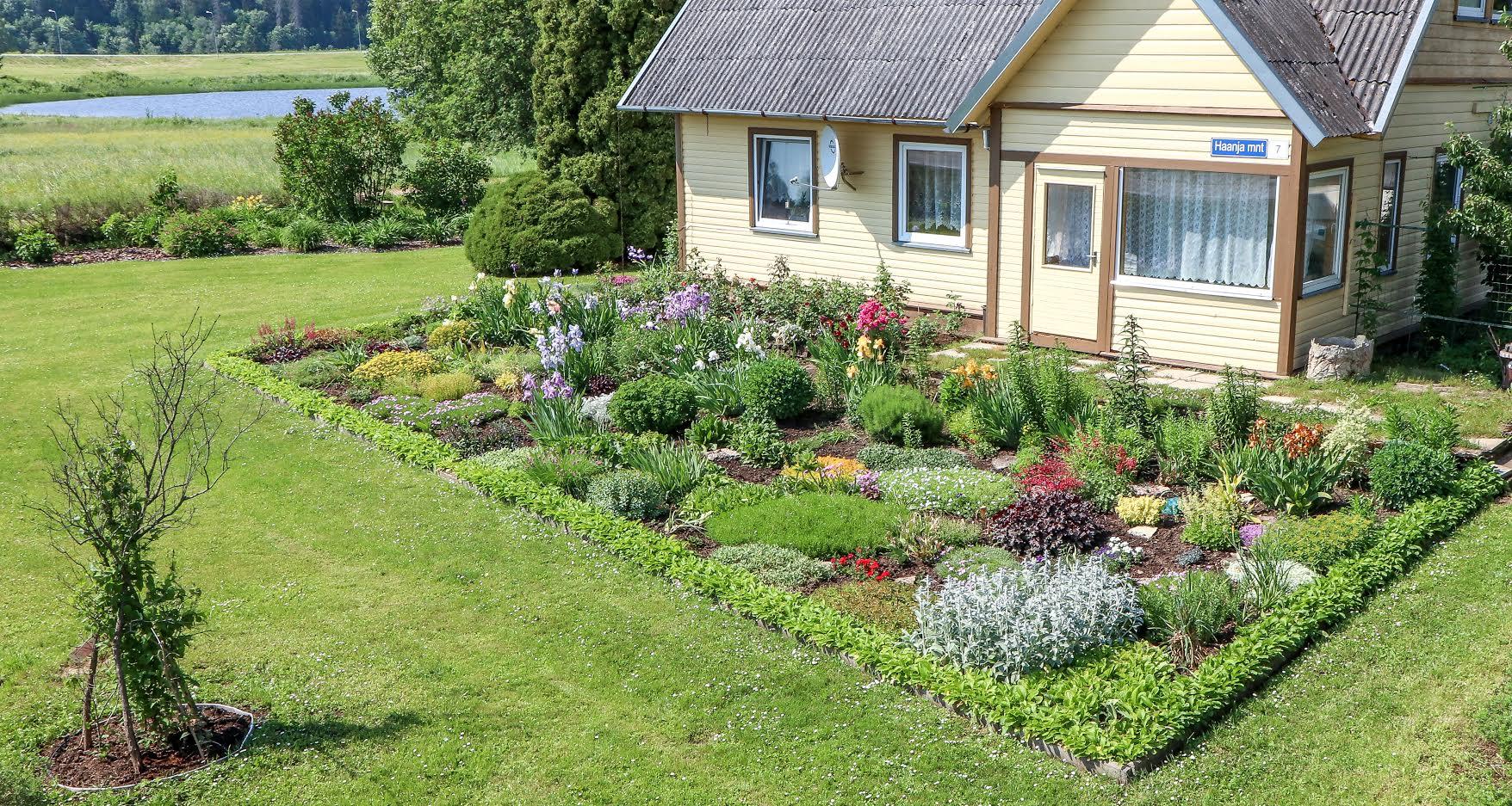 7f0351c60d1 FOTOD Maie Kurvitsa lillelises sanatooriumis kasvab ligi 200 taime