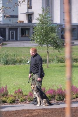 Vrumaa-koeraomanikud-kogusid-taas-toetust-varjupaigas-peatuvatele-loomadele-17
