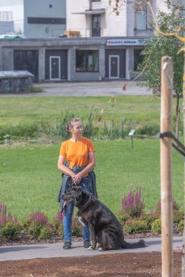 Vrumaa-koeraomanikud-kogusid-taas-toetust-varjupaigas-peatuvatele-loomadele-18
