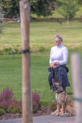 Vrumaa-koeraomanikud-kogusid-taas-toetust-varjupaigas-peatuvatele-loomadele-23