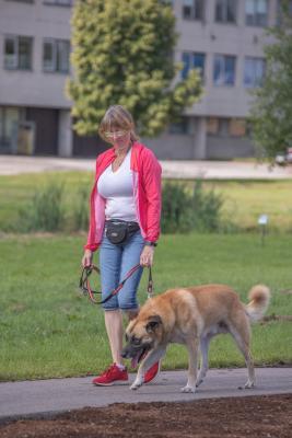 Vrumaa-koeraomanikud-kogusid-taas-toetust-varjupaigas-peatuvatele-loomadele-28