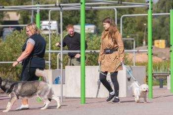 Vrumaa-koeraomanikud-kogusid-taas-toetust-varjupaigas-peatuvatele-loomadele-10
