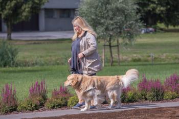 Vrumaa-koeraomanikud-kogusid-taas-toetust-varjupaigas-peatuvatele-loomadele-13