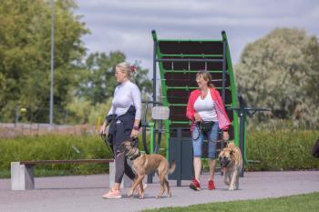 Vrumaa-koeraomanikud-kogusid-taas-toetust-varjupaigas-peatuvatele-loomadele-4