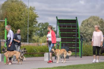 Vrumaa-koeraomanikud-kogusid-taas-toetust-varjupaigas-peatuvatele-loomadele-5