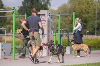 Vrumaa-koeraomanikud-kogusid-taas-toetust-varjupaigas-peatuvatele-loomadele-6