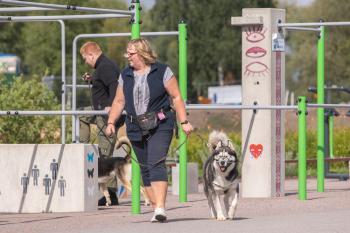 Vrumaa-koeraomanikud-kogusid-taas-toetust-varjupaigas-peatuvatele-loomadele-9